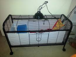 Guinea Pig Cages Cheap Guinea Pig Haha Sarah