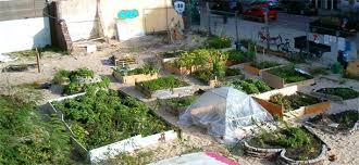 self sustaining garden reclaim the streets travel east cornwall devon pinterest