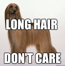 Long Hair Dont Care Meme - long hair don t care misc quickmeme