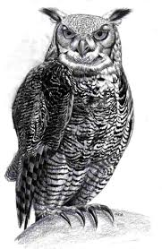 owl tattoo designs page 3 tattooimages biz