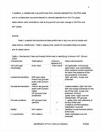 identification of two unknown bacteria lab report 1