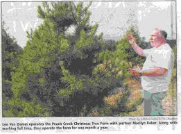 peach creek christmas tree farm tour