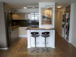 condo kitchen ideas condo kitchen designs new design alluring small ideas of renovated