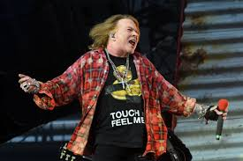 Axl Rose Meme Cake - axl rose is trying to get google to remove his fat photos shortlist