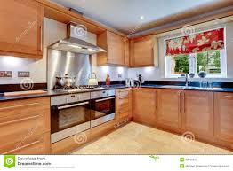 luxury modern kitchens luxury modern kitchen stock photos image 20642933