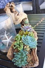 best 25 driftwood crafts ideas on pinterest driftwood art