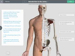 Photos Of Human Anatomy Complete Anatomy U2013 3d4medical