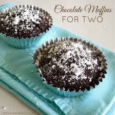 Toaster Muffins Chocolate Muffins For Two Lindsay Ann Bakes