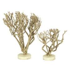 Tree Branch Decor Cheap Manzanita Branch Tree Find Manzanita Branch Tree Deals On