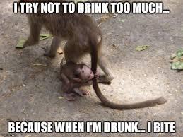 Monkey Meme - monkey memes indian style an aussie in austria