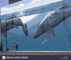 mural los angeles stock photos mural los angeles stock images whale wall mural hollywood los angeles california united states of america
