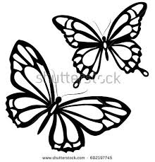 black butterfly isolated on white stock vector 645486412