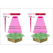 plant light for weed full spectrum led grow light best indoor weed growing with high