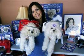 Halo For Blind Dogs Dog Mom Invents U0027muffin U0027s Halo Guide U0027 To Protect And Help Blind Dogs