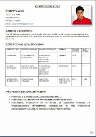 international curriculum vitae format pdf download resume format write the best resume