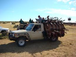 land cruiser africa helicopter culling in south africa www riflesunlimited co uk