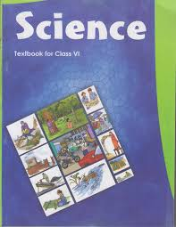 science textbook for class 6 652 amazon in ncert books