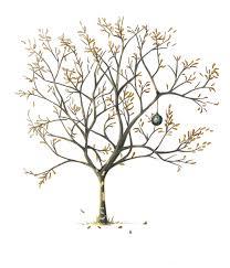 fall tree color sketch u2013 bess a yontz illustration