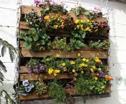 vertical vegetable garden with hanging planter wonderful