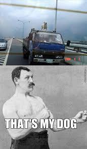 Funny Gangster Meme - gangsta memes best collection of funny gangsta pictures