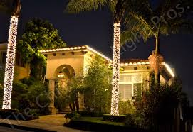 clear c9 incandescent to outline roofline and two large palm trees