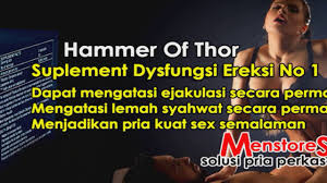 jual agen hammer of thor pekan baru hammerofthorasli space