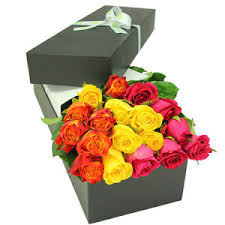 flowers roses roses online roses delivery australia wide flowers for everyone