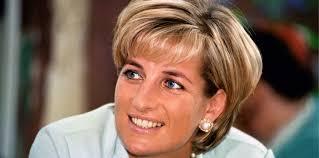 Diana Princess Of Wales Rose by Diana Princess Of Wales The Royal Family