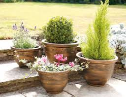 plant outdoor planters stunning tall outdoor planters best 25