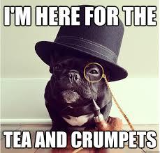 Tea Meme - funny tea memes teas crumpets and tea time