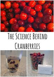 the science cranberries stir the