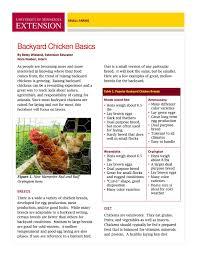 Caring For Backyard Chickens by Backyard Chicken Basics Pg1 Jpg