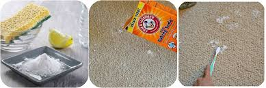 bicarbonate en cuisine how to clean a carpet with bicarbonate of soda