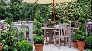 Azalea Topiary Let U0027s Talk Topiary Grow Beautifully