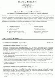 exles of hr resumes entry level hr resume exles exles of resumes