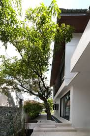 21 best hijauan house twenty nine design kuala lumpur hijauan house by twenty nine design in kuala lumpur malaysia the aim was to avoid cutting a single tree on site and the house notches its way around the