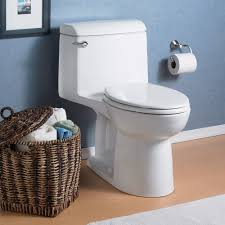 Eljer Toilet Seats Home Depot Champion 4 Elongated One Piece Toilet With Seat American Standard