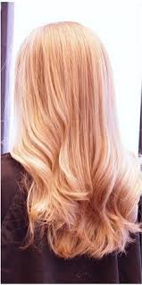 light strawberry blonde hair color chart image result for light strawberry blonde hair color chart fall
