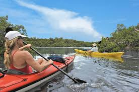 kayaking the ten thousand islands brings you close to nature