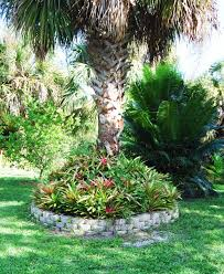 landscaping around palm trees round designs