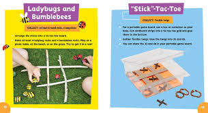 super simple crafts sticks and stones pbs kids 9781935703846