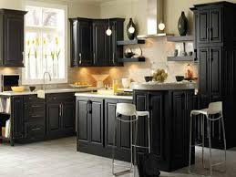 Black Painted Kitchen Cabinets With Black Appliances  Kitchen - Images of painted kitchen cabinets