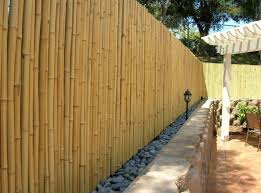 exterior design enchanting bamboo lowes fencing for exciting