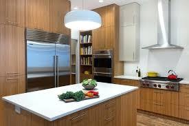 choisir hotte cuisine bien choisir sa hotte de cuisine une hotte avec rangement comment