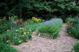 best mulch for vegetable gardens picture ideas choosing best