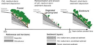 sketch to illustrate evolution of land use sediment deposition and