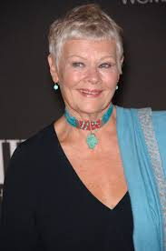how to get judi dench hairstyle a haute night at the movies local hair care professional martin