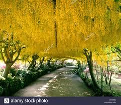 famous gardens stock photos u0026 famous gardens stock images alamy