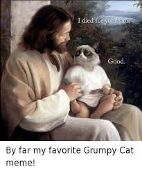 Good Grumpy Cat Meme - i died for your sins good by far my favorite grumpy cat meme