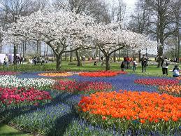 Most Beautiful Gardens In The World by Keukenhof El Parque De Los Tulipanes Multicolores Netherlands